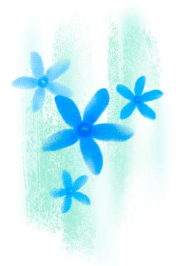 花植物オリジナルイラスト「bluestar」